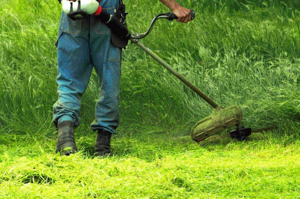 Cómo desbrozar hierbar alta